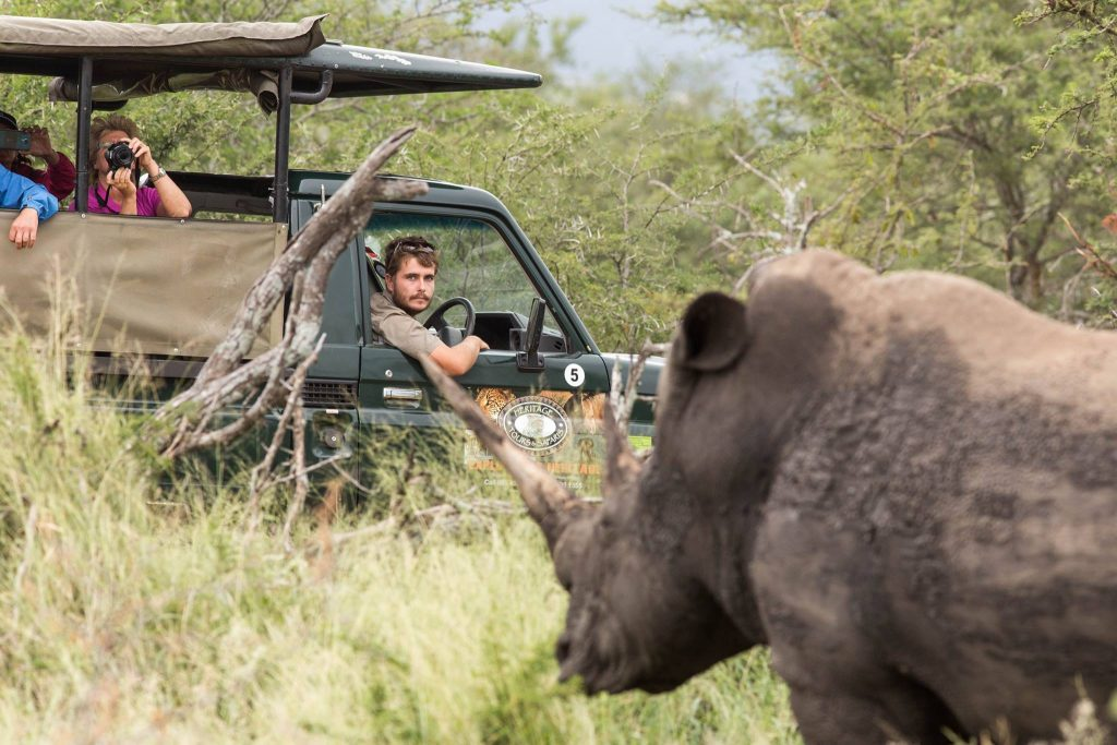 clients on big 5 safari