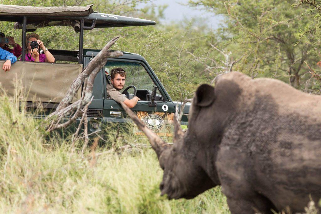 clients on big 5 safari