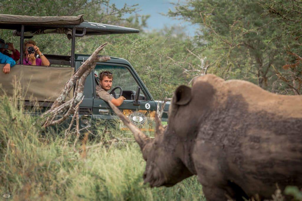 half day safari hluhluwe-imfolozi park